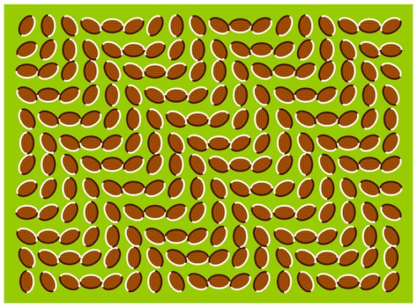 Crazy optical illusion