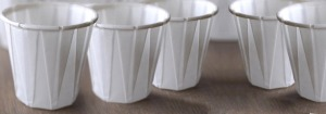 salsa cups