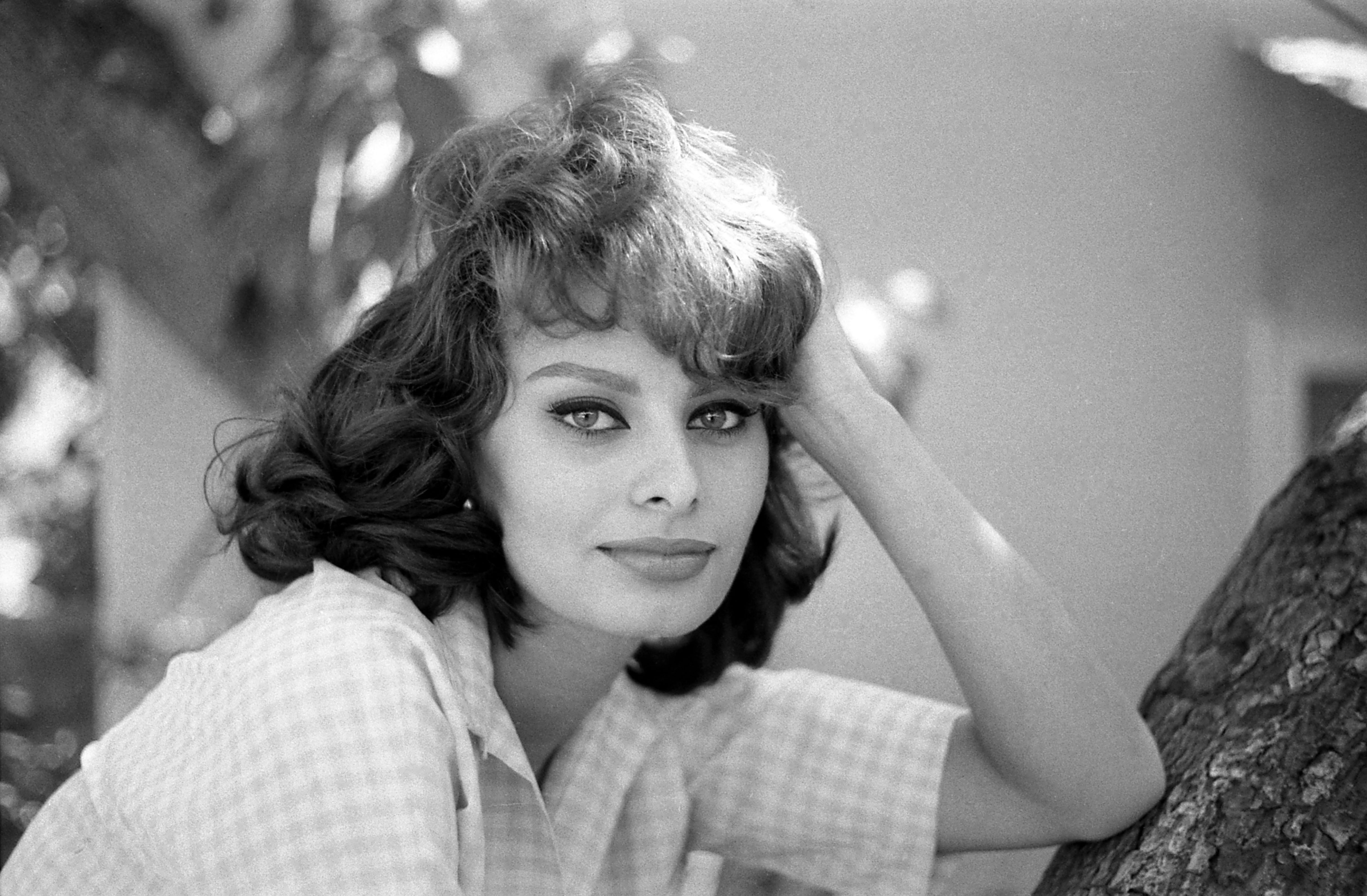 """Search Results for """"Sophia Loren Pictures 2014"""" – Calendar ..."""